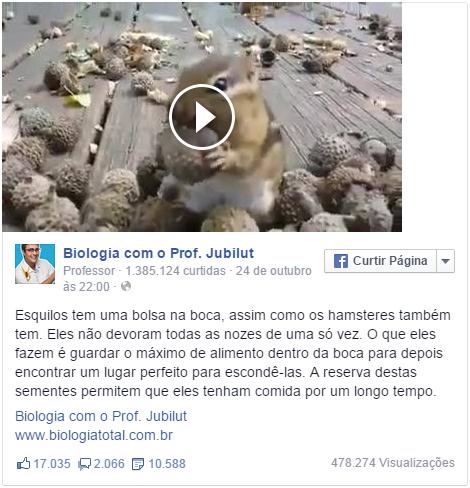 facebook-biologia-esquilo.png