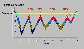 Estágios do Sono